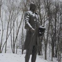 Великие Луки, 9 января 2021... Памятник Петру Первому... :: Владимир Павлов