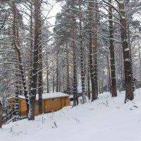 зима :: Юрий Борзов