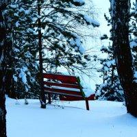 Задумавшись снегом :: Татьяна Грабежева