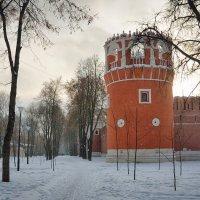 Донской монастырь в Москве :: Михаил Танин
