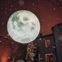 Лунный дворик :: Добрый Ёж