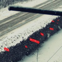 Демонстрация) :: Елена Минина