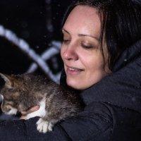 Кошки.... :: Helga Sergeenko