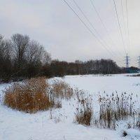 Январь в Москве :: Андрей Лукьянов