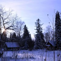 Зимняя сказка :: Вера Андреева