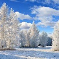 У  зимы  во  власти :: Геннадий Супрун