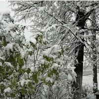 Так начиналася зима :: Татьяна Грабежева