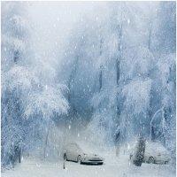 Снега России :: Людмила Фил