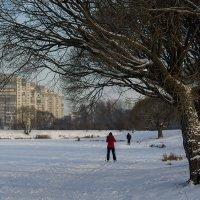 Городские лыжники 2 :: VL
