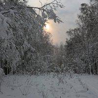 зимний вечер :: Евгений Тарасов