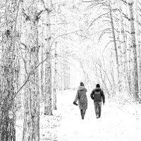 У зимы свои романтические сюжеты :: Екатерина Торганская