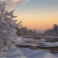 Морозно... :: Владимир Чикота