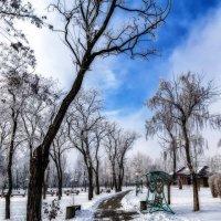 Морозный день :: Евгений Кирюхин