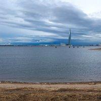 Финский залив :: Lysa
