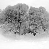 В снежной чаше :: Татьяна