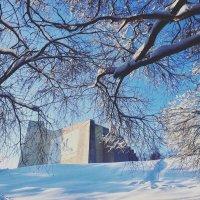 Абстракция зимы :: Татьяна