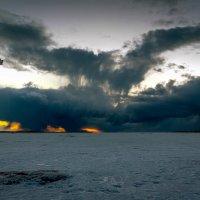 Будет порывистый ветер с градом. :: Валентин Кузьмин
