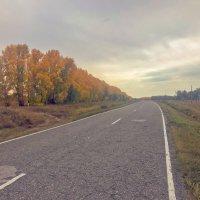 Путь :: Михаил Соколов