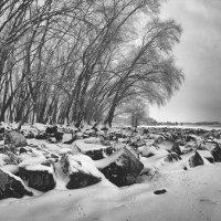Онемевшие камни. :: Volodymyr Shapoval VIS t
