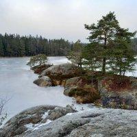 Январский день в Швеции :: Alm Lana