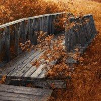 После грозы.....Фото на холсте... :: Сергей Клапишевский