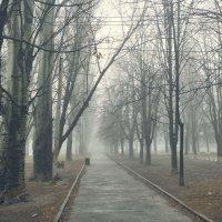 Туманная перспектива :: Константин Бобинский