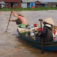Меконг.Жизнь на воде. :: Лариса Борисова