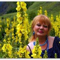 Цветы Осетии :: Александр Гапоненко