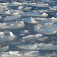 дрейфующие льдины :: виталий Цицюрский