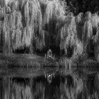 Рыбак :: Lev Miln