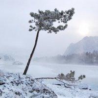 река Катунь в -30 :: Анастасия Ткаченко
