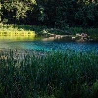 Голубое озеро, г.Казань :: Елена Головченко
