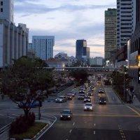 Сингапур :: Алексей Зверев