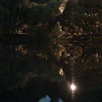 Ночной пруд :: Lev Miln