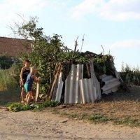 Дети строят шалаш :: Павел Бахарев