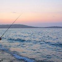Местный житель в процессе добычи рыбы :: Александр Жданов
