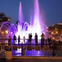 Поющие фонтаны Хабровска :: Алексей Зверев