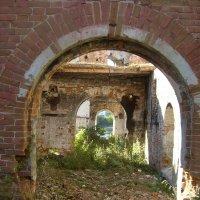 Старые развалины завода :: Анастасия Гапанюк (начинающий фотограф)