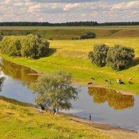 На реке :: Владимир Зыбин