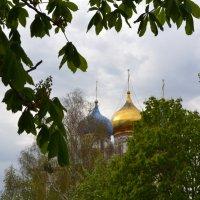 Храм на Соборной в Рязани :: Ирина Юдина