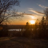 Вид на Красное село :: Максим Судаков