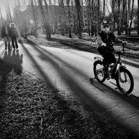 весна в парке-2 :: Татьяна Соловьева