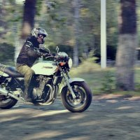 Suzuki InaZuma :: Andrey Edinov