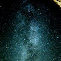 Звездное небо :: Сергей Могильдя