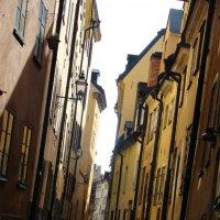 Улицы Стокгольма... :: Александра Пожидаева