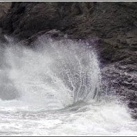 Волна :: Юлия Устьянцева