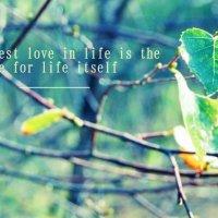 The greatest love :: Екатерина Елизарова