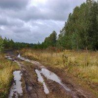 Слякотная осень :: Владимир Новиков