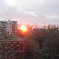 Утро :: Ирина Березкина