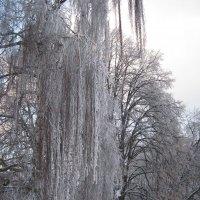 Ледяной каскад :: Ирина Березкина